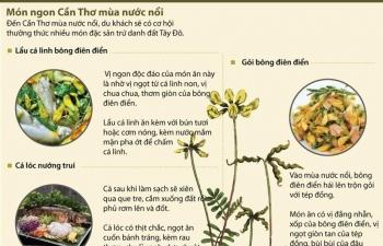 Infographics: Thưởng thức món ngon Cần Thơ mùa nước nổi