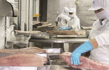 Giá cá, tôm khởi sắc, thủy sản xuất khẩu sẽ đạt 9,6 tỷ USD