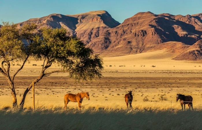 7 sa mạc lâu đời nhất trên thế giới