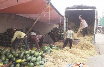 Xuất nông sản chậm trễ, Bộ Công Thương ra công văn hỏa tốc
