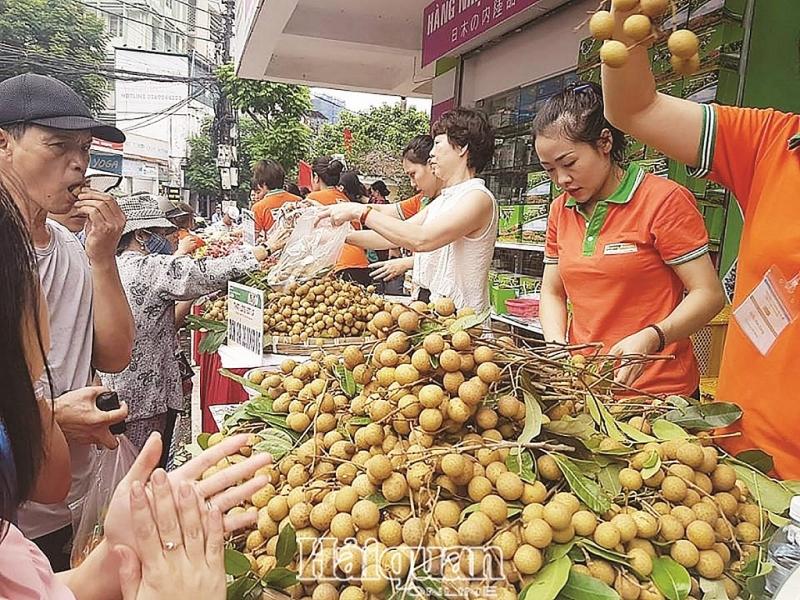 bo cong thuong kien nghi loat giai phap go kho xuat khau nong san