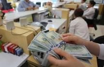 Doanh nghiệp chủ động ứng phó  trước biến động của thị trường tiền tệ