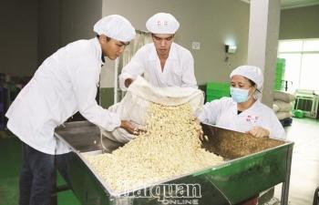Nông sản Việt cạnh tranh với hàng EU khi thuế về 0%