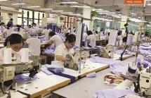 Doanh nghiệp thờ ơ với CPTPP, Bộ Công Thương gửi Thủ tướng loạt kiến nghị