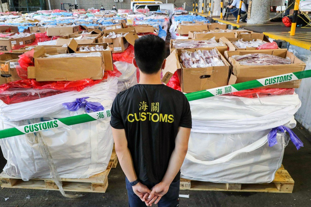 A customs official inspects a haul of seized contraband meat in June. About 2,500 tonnes of frozen meat, worth about HK$90 million (US$11.6 million) and destined for Guangdong province, have been seized so far this year. Photo: Edmond So