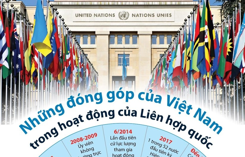 Infographics: Những đóng góp của Việt Nam trong hoạt động của Liên hợp quốc