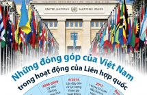 infographics nhung dong gop cua viet nam trong hoat dong cua lien hop quoc