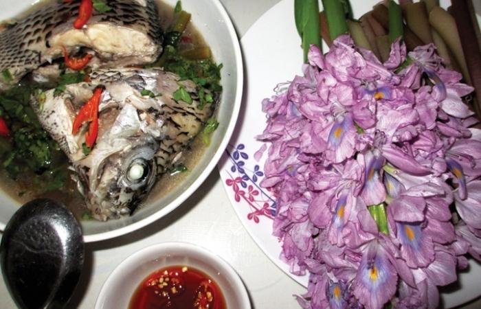 Về Tân Phú ăn canh chua hoa lục bình