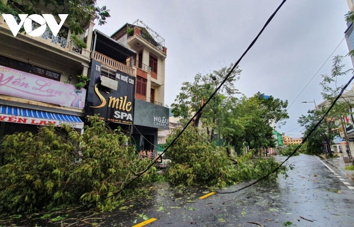 Bão số 5 đổ bộ, Thừa Thiên - Huế tan hoang, cây đổ ngổn ngang