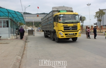 Cần tạo điều kiện cho dược liệu nhập khẩu qua cửa khẩu Chi Ma để ngăn ngừa buôn lậu