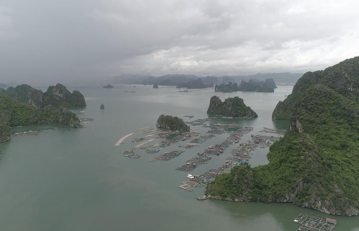 Vịnh Bái Tử Long: một vẻ đẹp hoang sơ đến ngỡ ngàng của đất Quảng Ninh
