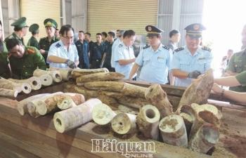 Hải quan ngăn chặn có hiệu quả tội phạm buôn bán động vật hoang dã xuyên quốc gia