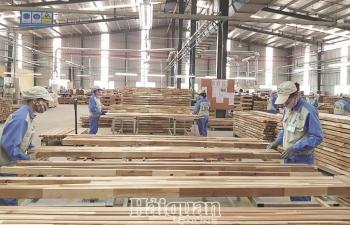 """FDI vào ngành gỗ tăng nhanh:  Nơm nớp lo đầu tư """"núp bóng"""""""