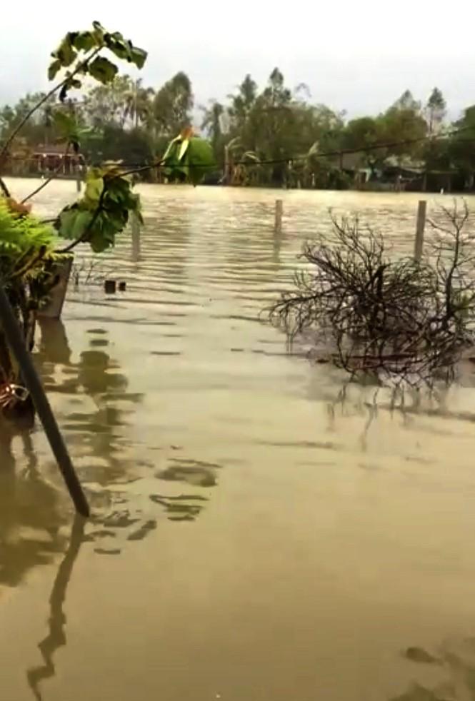 Thừa Thiên Huế: Mưa lớn diện rộng, nhiều nơi tái ngập lụt và sạt lở đất - ảnh 4