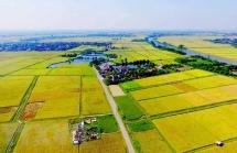Đồng thuận cao với đề xuất  miễn thuế sử dụng đất nông nghiệp