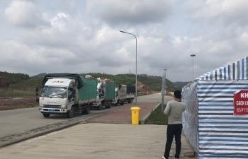 Quảng Ninh: Xây dựng đội ngũ lái xe để chuyển tiếp hàng hóa sang Trung Quốc