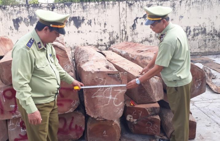 Xem xét truy cứu hình sự vụ mua bán hơn 13.400 m3 gỗ