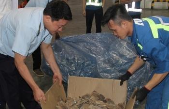 Hà Nội: Quý I, thu nộp ngân sách 929 tỷ đồng từ xử lý vi phạm