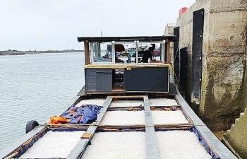 Xuất lậu hơn 11 tấn sứa biển sang Trung Quốc