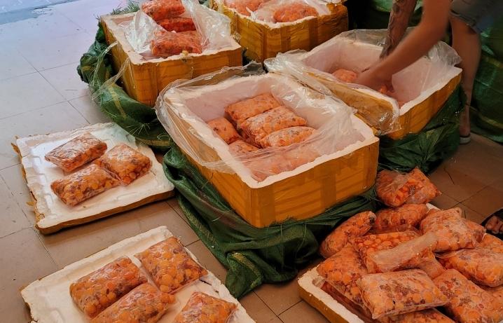 Hà Nội: Chặn xe ô tô chở 600kg trứng gà non không rõ nguồn gốc