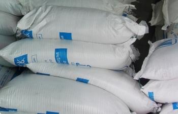 Hải quan Quảng Trị thu giữ hơn 124 tấn đường kính vi phạm