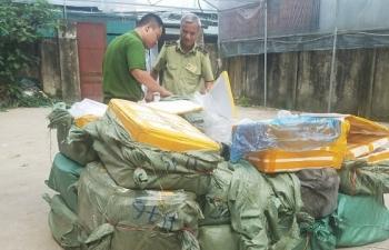 Hà Nội: Phát hiện 2 điểm tập kết hơn 1,3 tấn nầm lợn không rõ nguồn gốc