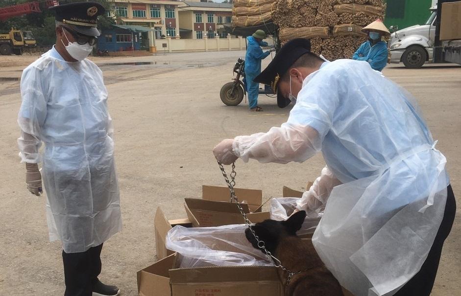 Buôn lậu qua khu vực biên giới Bình Liêu (Quảng Ninh) còn tiềm ẩn nhiều rủi ro