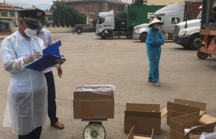 Đầu tư Khu kho bãi hàng hóa tại cửa khẩu Hoành Mô hơn 75.000m2