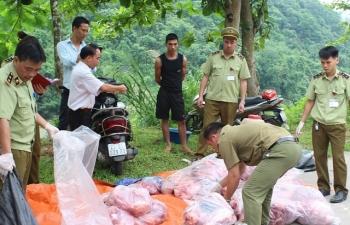 Tăng cường kiểm soát chống buôn bán, vận chuyển lợn, sản phẩm từ lợn nhập lậu