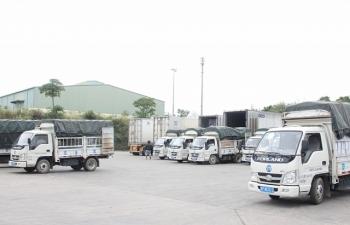Cần phân biệt sản phẩm thủy sản và động vật thủy sinh xuất khẩu sang Trung Quốc