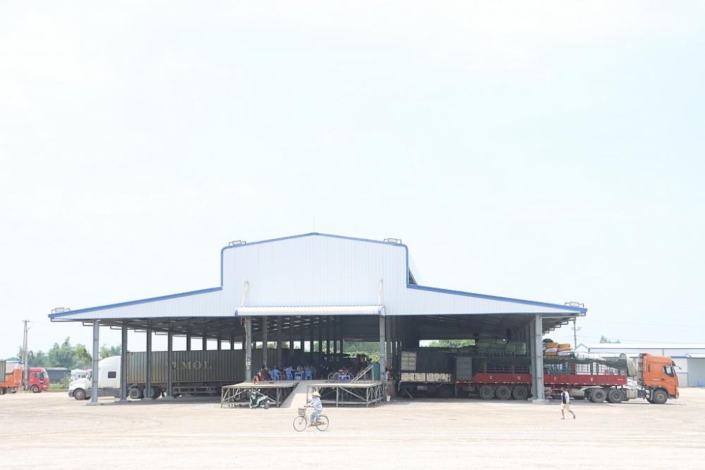 Địa điểm kiểm tra hàng hóa tập trung của Công ty CP XNK Tân Đại Dương. Ảnh: Q.H