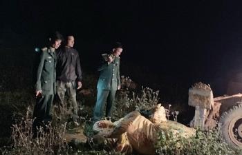 Quảng Ninh: Phát hiện xe tải vận chuyển trái phép nửa tấn thịt lợn sang Trung Quốc