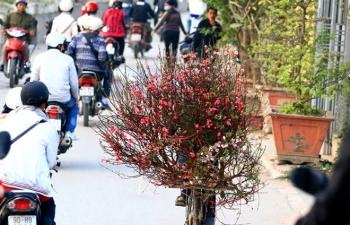 Xu thế thời tiết từ 29 tháng Chạp đến mùng 7 Tết Nguyên đán Kỷ Hợi