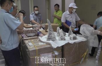 Tạm giữ 125,15 kg sừng tê giác vận chuyển về sân bay quốc tế Nội Bài