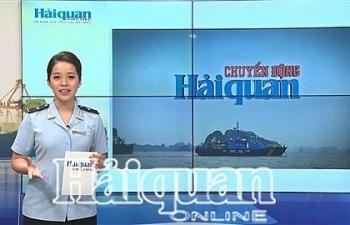 Bản tin Chuyển động Hải quan tháng 7/2019