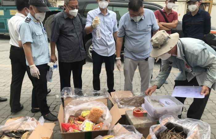 Hải quan TPHCM phát hiện hàng trăm thùng hàng nhập lậu ngụy trang sò huyết
