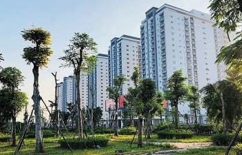 Doanh nghiệp bất động sản Việt đối diện thách thức gì trong năm 2019?