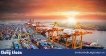 Cổ phiếu cảng biển trên sàn chứng khoán: Lên vội, xuống gấp