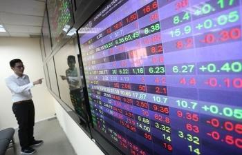 Chọn cổ phiếu, đừng nhìn chỉ số