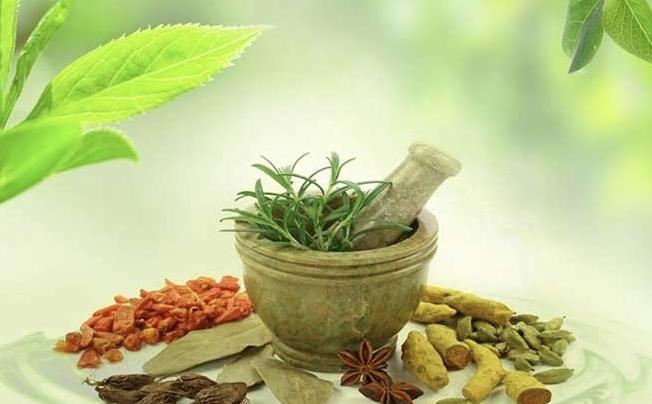 Nhập khẩu hàng hoá có nguồn gốc thực vật được gỡ vướng