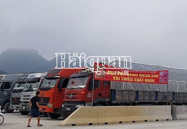 Khu vực dành riêng cho các phương tiện chở vải thiều tập kết chờ làm thủ tục tại Lạng Sơn. Ảnh: Nguyễn Cường