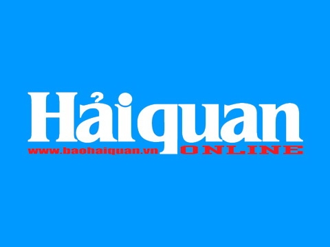 0531 logo
