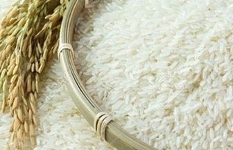 Hướng dẫn thủ tục nhập khẩu lúa gạo từ Campuchia có C/O mẫu E và S