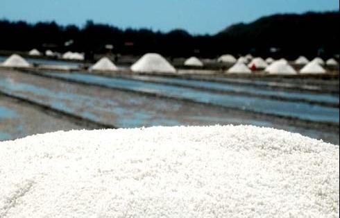 Hỗ trợ hơn 639 tấn muối cho người dân Hà Tĩnh ảnh hưởng do thiên tai