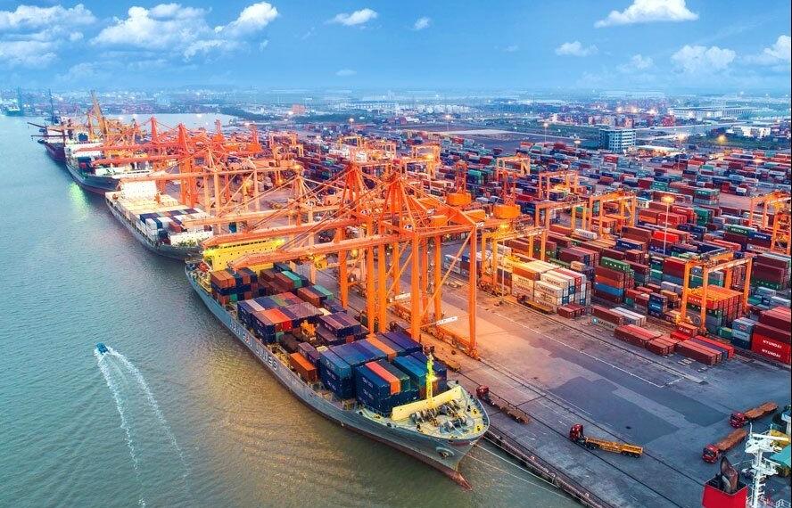 Trường hợp nào sẽ được miễn phí trọng tải, đảm bảo hàng hải?