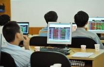 Nhóm cổ phiếu vốn hóa vừa và nhỏ có thể hút dòng tiền