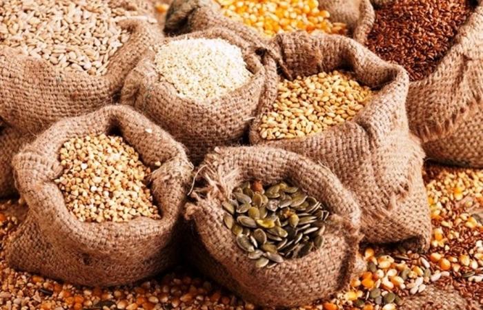 Đề xuất điều chỉnh mức thuế nhập khẩu hạt giống cây trồng về 0%