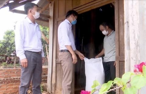 Xuất cấp gần 1.850 tấn gạo cho người dân Quảng Nam, Quảng Ngãi bị ảnh hưởng bởi dịch