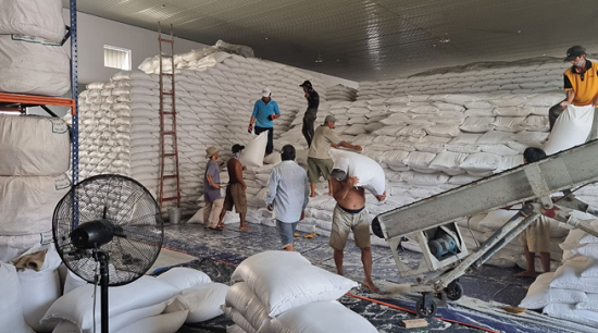 Mua thêm hơn 56 nghìn tấn gạo dự trữ quốc gia để hỗ trợ người dân TP Hồ Chí Minh