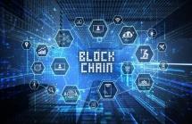 brazil huong toi xay dung co che hoat dong hai quan ket noi blockchain